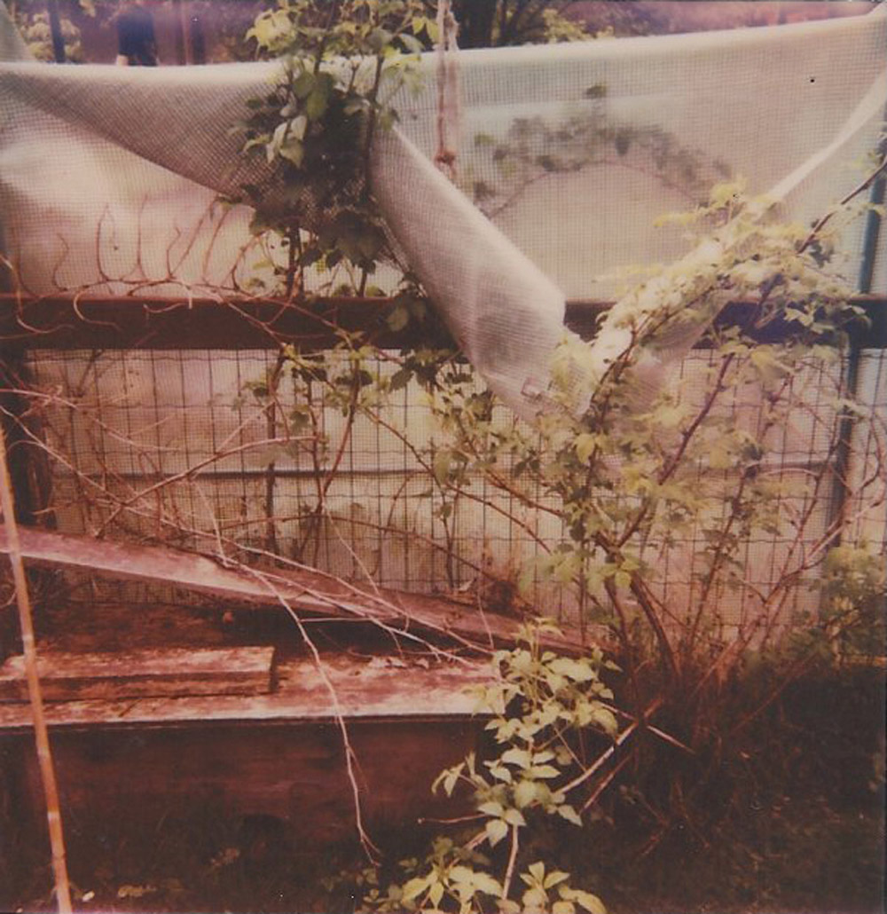 different time same place, Polaroidfoto mit Impossible 600er Farbfilm, 2014